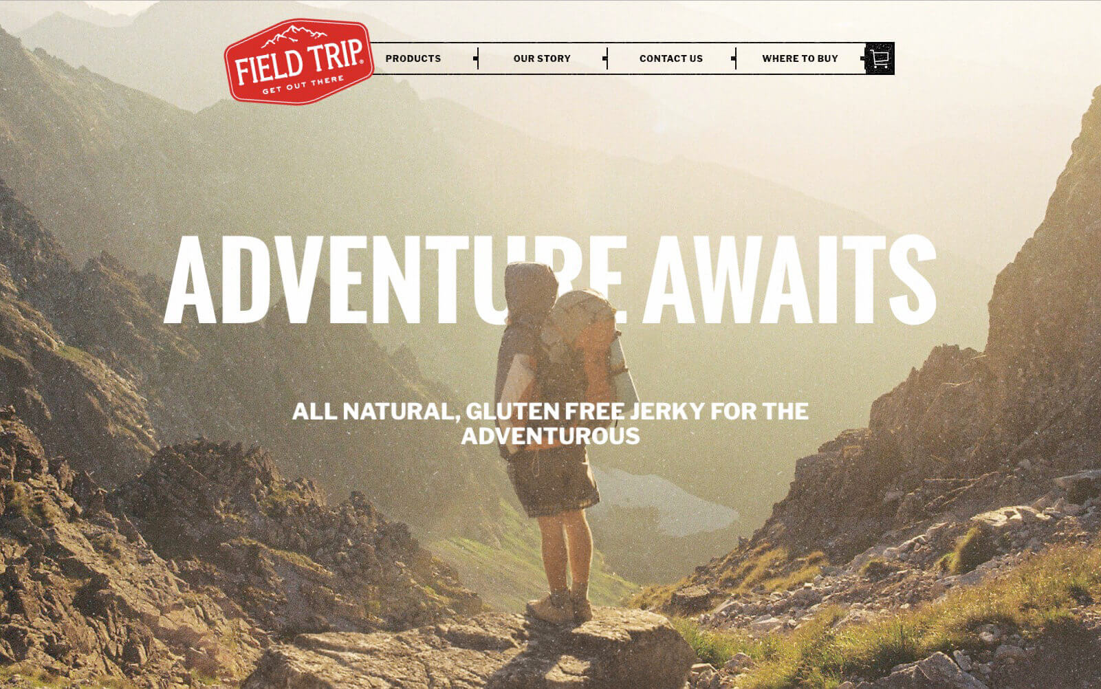 Field Trip Jerky Website